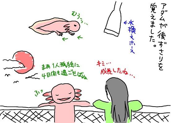 20090925atozusari_1_fc2.jpg