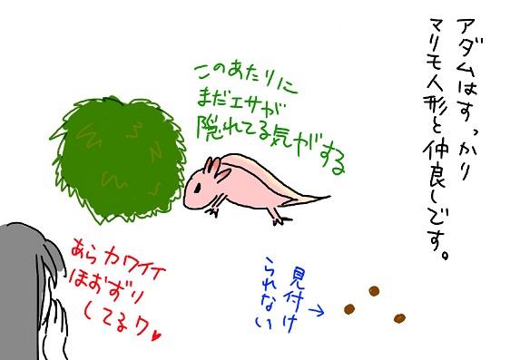 20091009friend_fc2.jpg