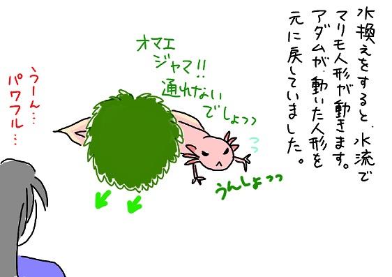 20091015move_fc2.jpg