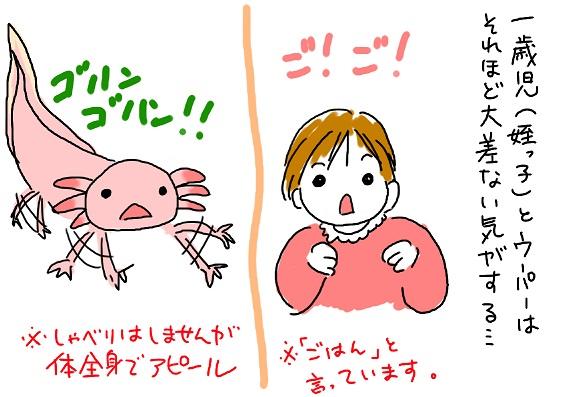 20091018miyo_fc2.jpg