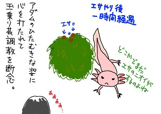 20091103tamanori_fc2.jpg