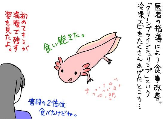 20091115ebi_fc2.jpg