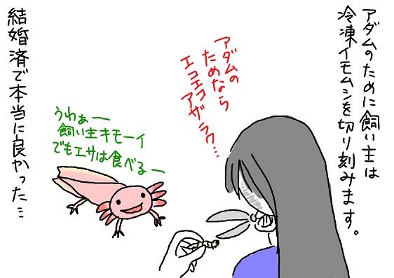 20091116imomusi_fc2.jpg