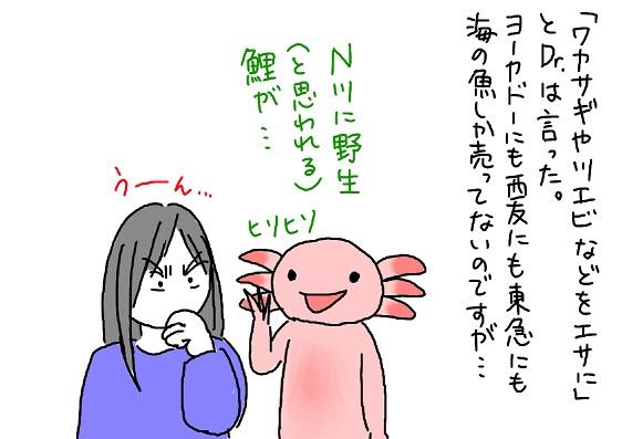 20091202kawazakana_fc2.jpg