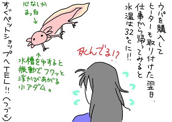 20091206kako3-3_fc2.jpg