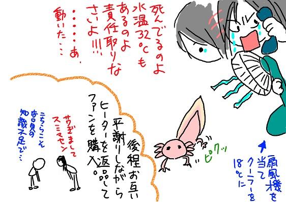 20091207kako3_fc2.jpg