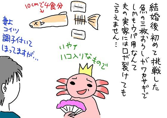 20091211wakasagi_fc2.jpg