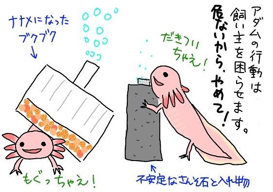 20091212asobi_fc2.jpg