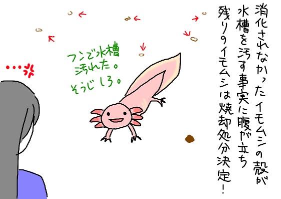 20091218mushi_fc2.jpg