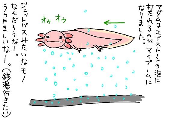 20091219bath_fc2.jpg