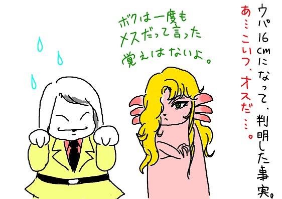 20091221maraihi_fc2.jpg