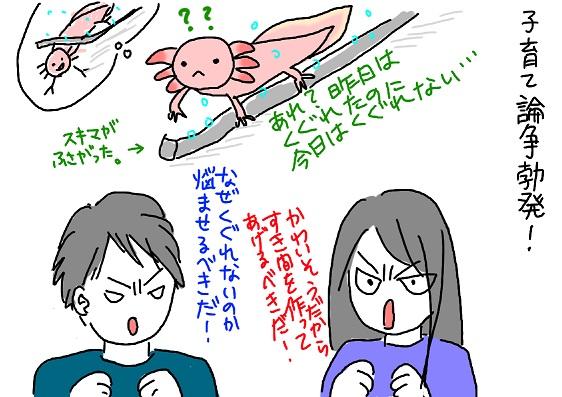 20091222sukima_fc2.jpg