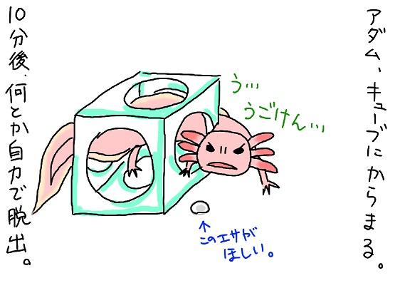 20100104karamaru_fc2.jpg