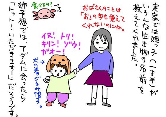 20100107mei_fc2.jpg