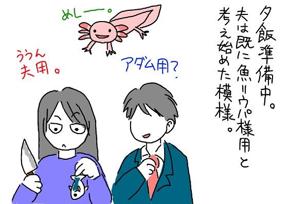20100125aji_fc2.jpg