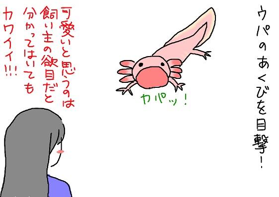 20100127akubi_fc2.jpg