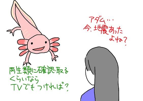 20100313jisin_fc2.jpg