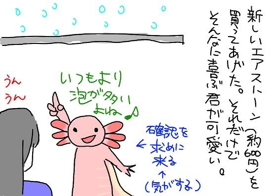 20100319awa_fc2.jpg