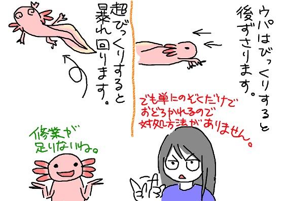 20100329bikkuri_fc2.jpg