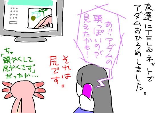 20100403china_fc2.jpg