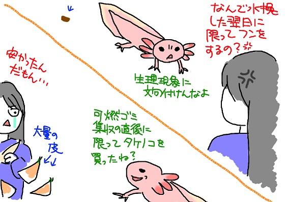 20100408takenoko_fc2.jpg