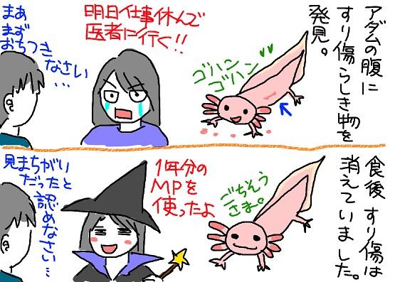 20100410kega_fc2.jpg