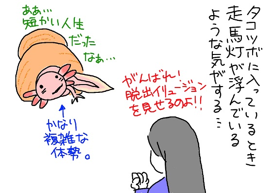 20100420takotubo3_fc2.jpg