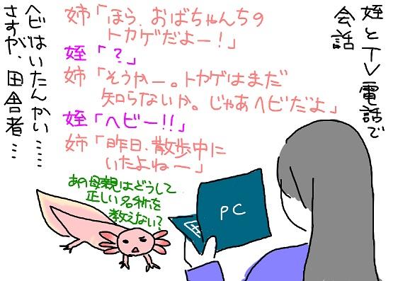 20100606hebi_fc2.jpg