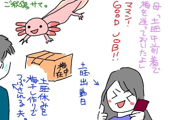 20100612umebosi_fc2.jpg