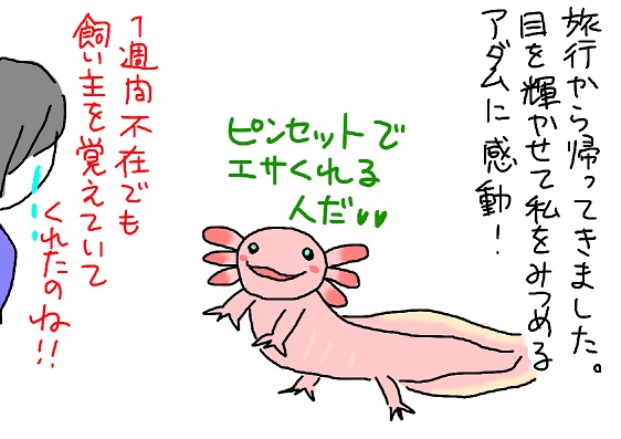20100625kitaku_fc2.jpg