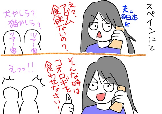 20100706spain_fc2.jpg