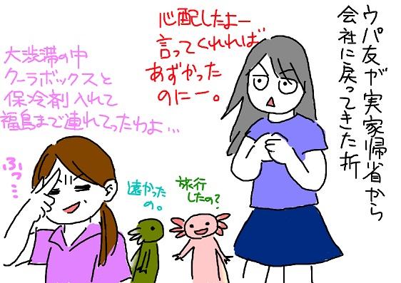 20100824kisei_fc2.jpg