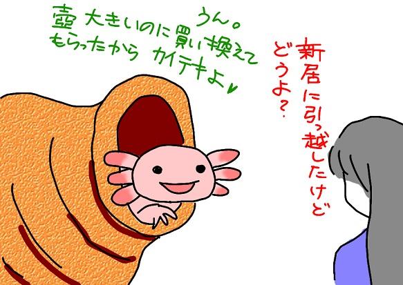 20101126sinkyo_fc2.jpg