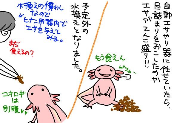 20110106higeki_fc2.jpg