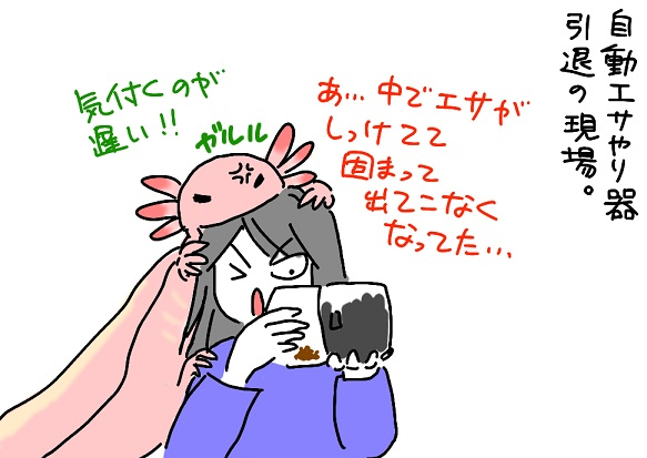 20110124intai_fc2.jpg