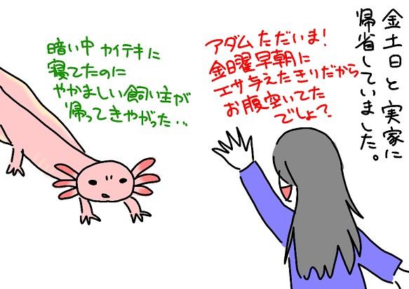 20110213kisei_fc2.jpg