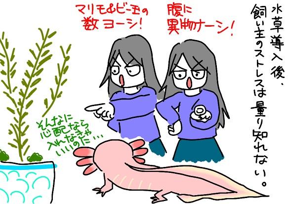 20110516worried_fc2.jpg