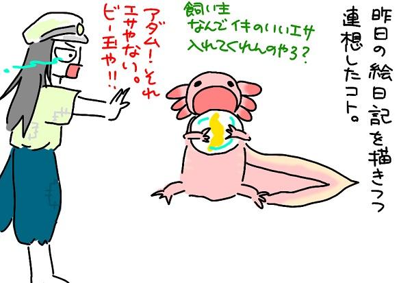 20110517hotarunohaka_fc2.jpg