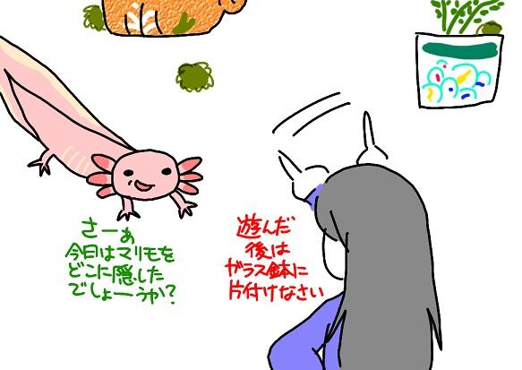 20110524kataduke_fc2.jpg