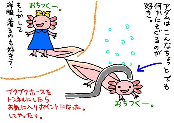 20110530rika_fc2.jpg