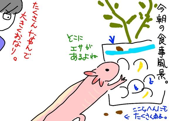 20110602esa_fc2.jpg
