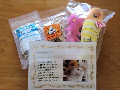 IMG_5622urabanashi.jpg