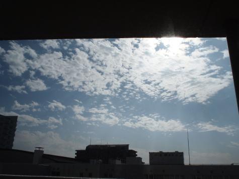 PB209367urabanashi.jpg