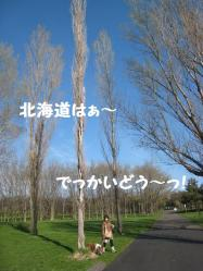 IMG_9866-1.jpg