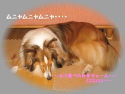 IMG_9925-1.jpg