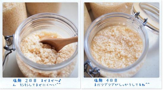 塩麹 2日目と4日目比較