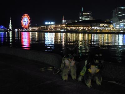 神戸4 017