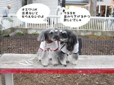軽井沢 052