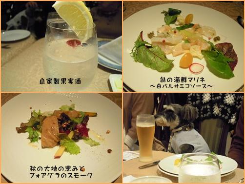 軽井沢2cats1