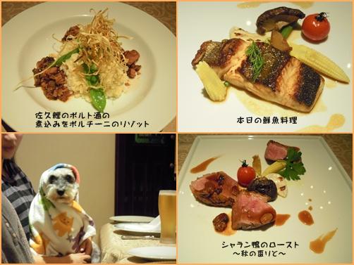 軽井沢2cats2